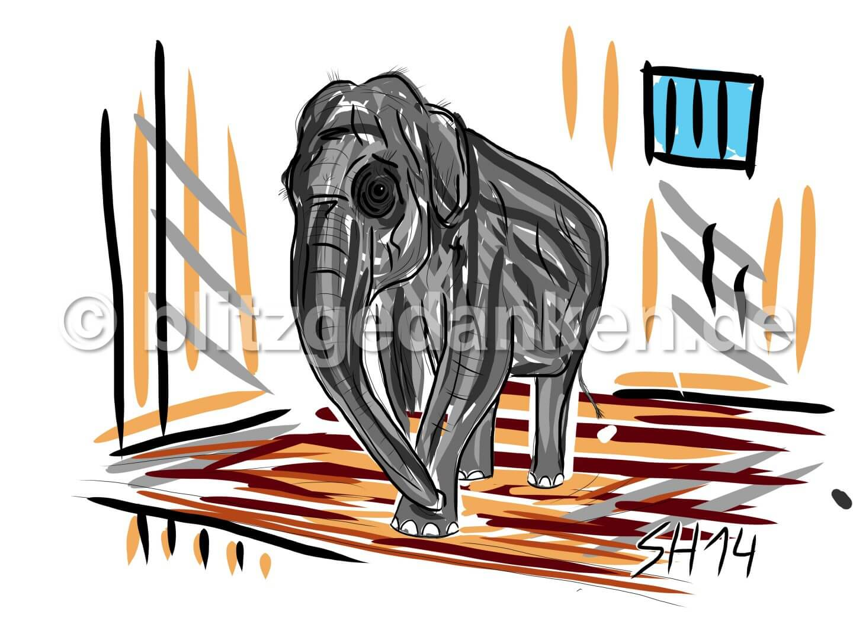 Elephant im Zoo
