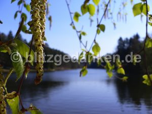 Photo, blauer See im Elsass