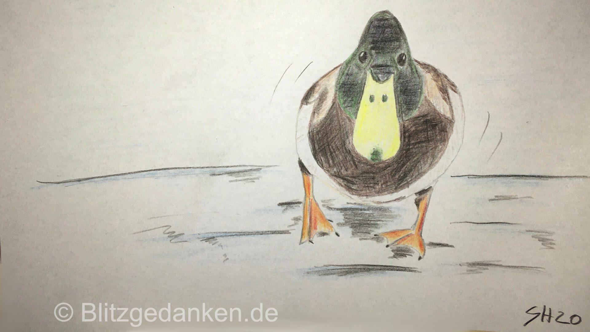 Ente auf dem Eis