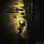 walk at night 1/2